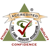 TCIA Certified Accreditation Logo