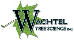 Wachtel Tree Science Mobile Logo