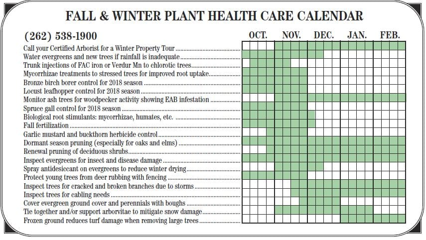 Fall Tree Care Calendar