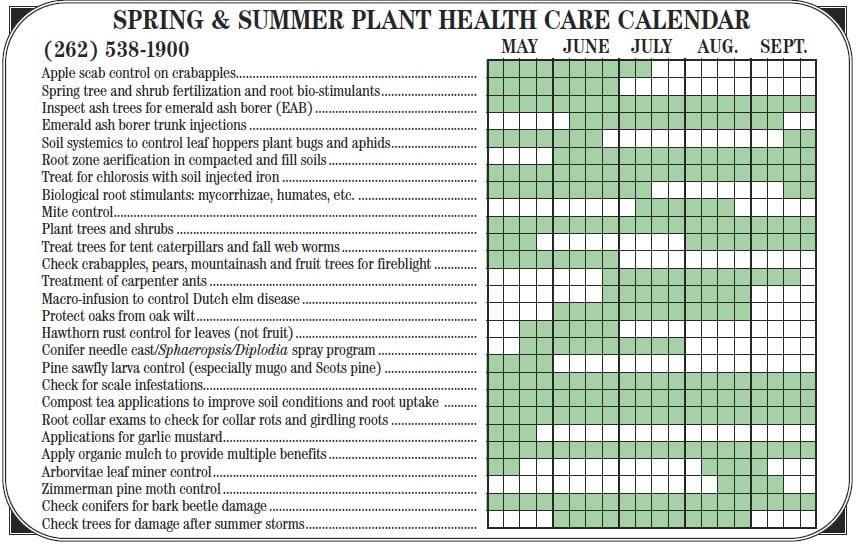 Spring Tree Care Calendar