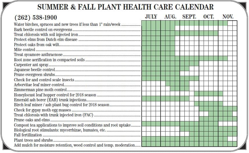 Summer Tree Care Calendar