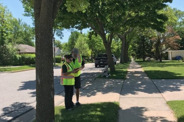 The Benefits Of Hiring A Certified Arborist Image